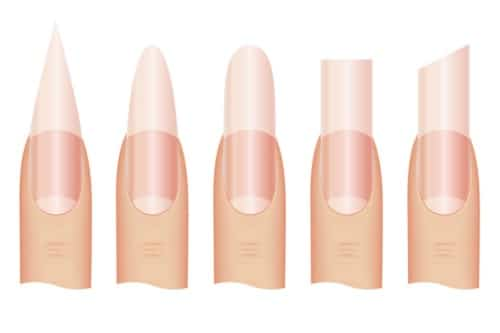 Your Nail Shape and Personality , The Nail Lady